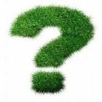 punto-interrogativo-verde